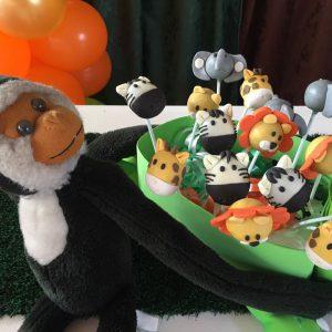 cakepops safari